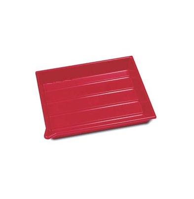 Bandeja Revelado - AP 24x30 cm Roja |