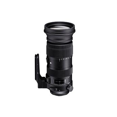 Sigma Objetivo Canon Pro 60-600mm f/4.5-6.3 DG OS HSM Sport